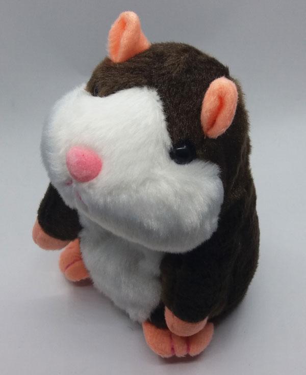 govorest-hamster-16