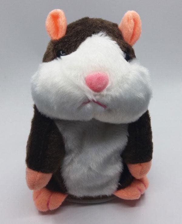 govorest-hamster-timnokafqv-1