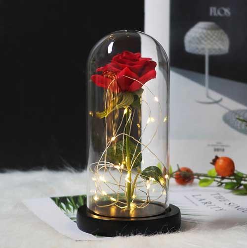cervena-roza-v-staklenica