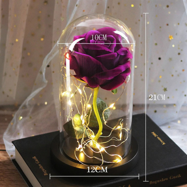 roza-v-stiklenica-01
