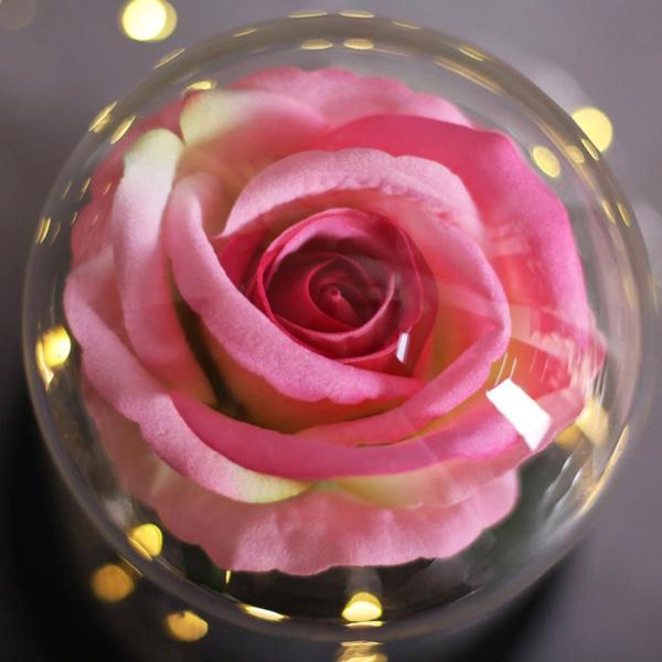 roza-v-stiklenica-03