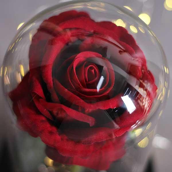 roza-v-stiklenica-11