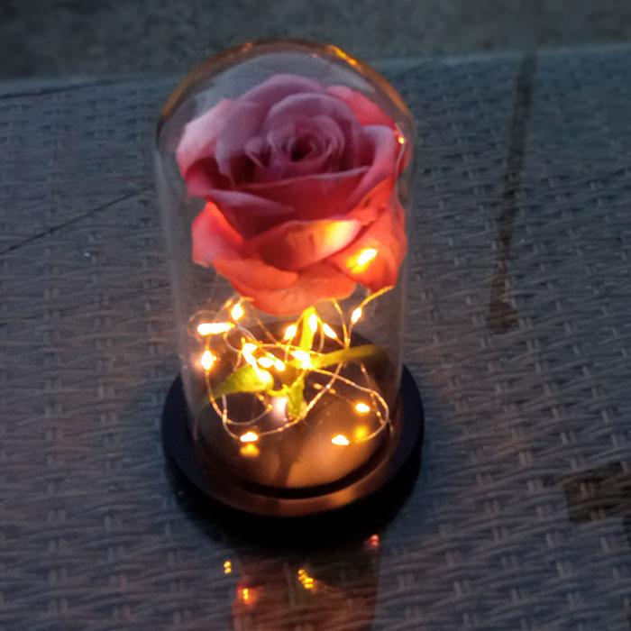 roza-v-stiklenica-bledo-rozovo-2