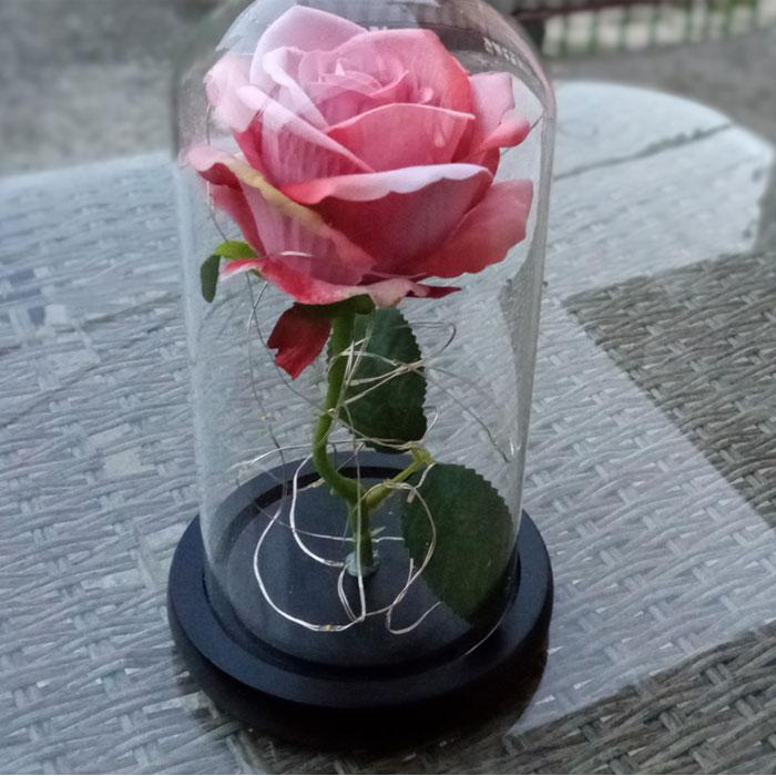 roza-v-stiklenica-bledo-rozovo-6