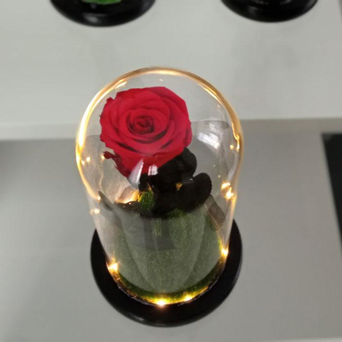 vecna-estestvena-roza-v-stiklenica-8