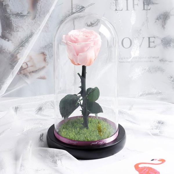 vecna-estestvena-roza-v-stiklenica-rozova-1