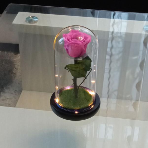 vecna-estestvena-roza-v-stiklenica-rozova-2