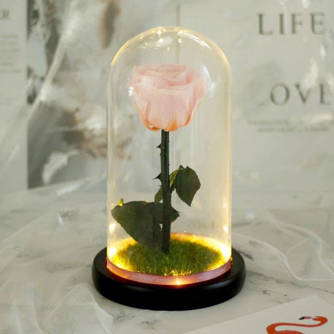 вечна естествена роза в стъкленица розова