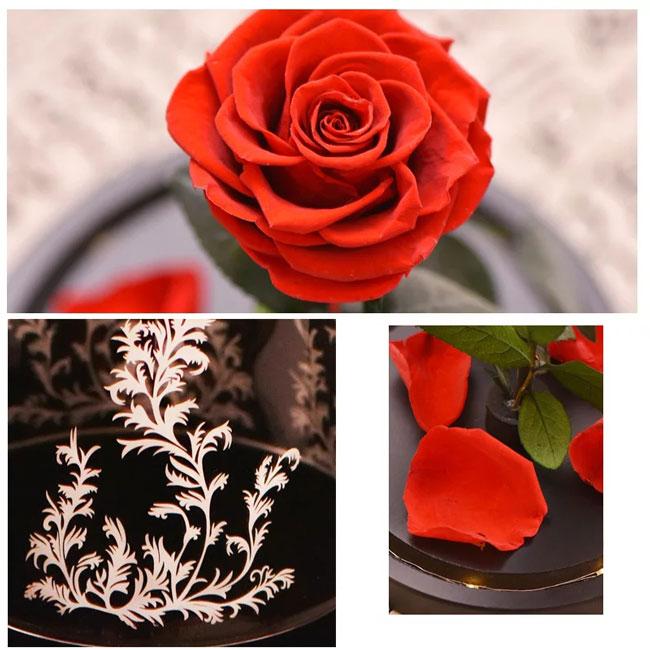 Вечна роза в стъкленица