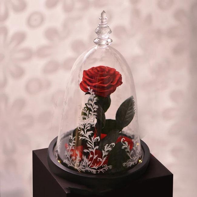 vecna-roza-v-staklenica-7