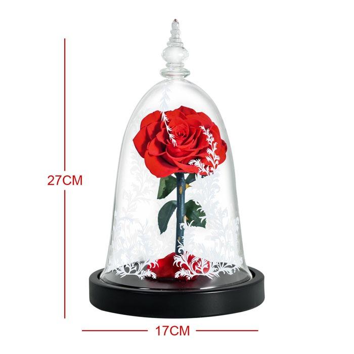 vecna-roza-v-staklenica-8