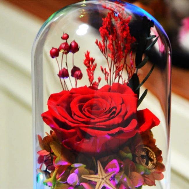 vecna-roza-v-staklenica-estestvena-s-led-svetlina-2
