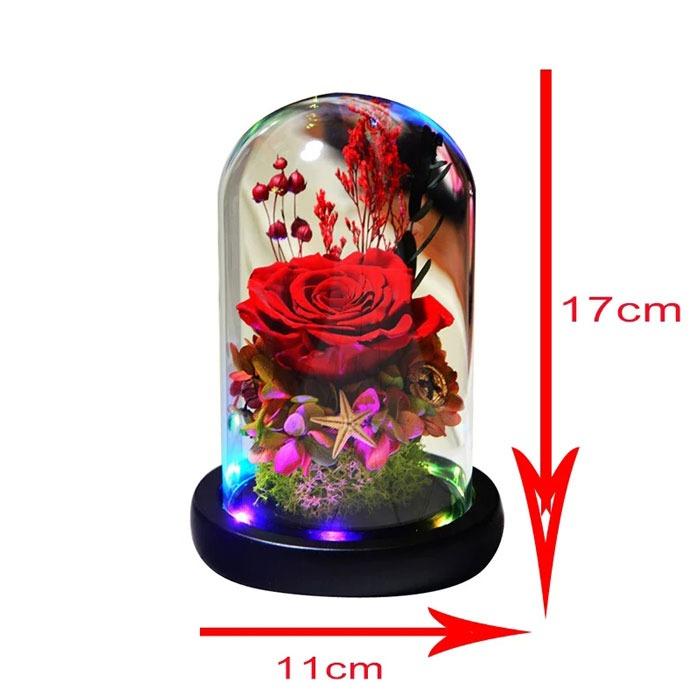 vecna-roza-v-staklenica-estestvena-s-led-svetlina-4