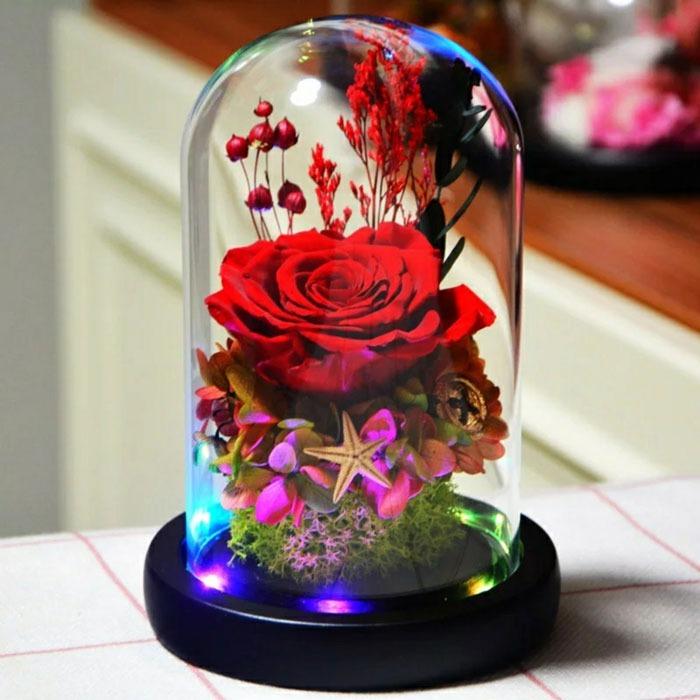vecna-roza-v-staklenica-estestvena-s-led-svetlina