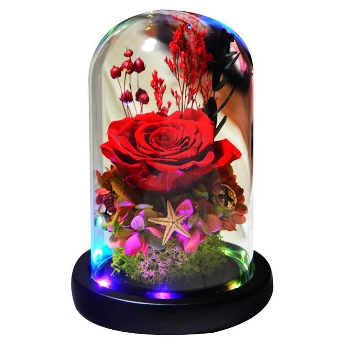 vecna-roza-v-staklenica-estestvena-s-led-svetlina3