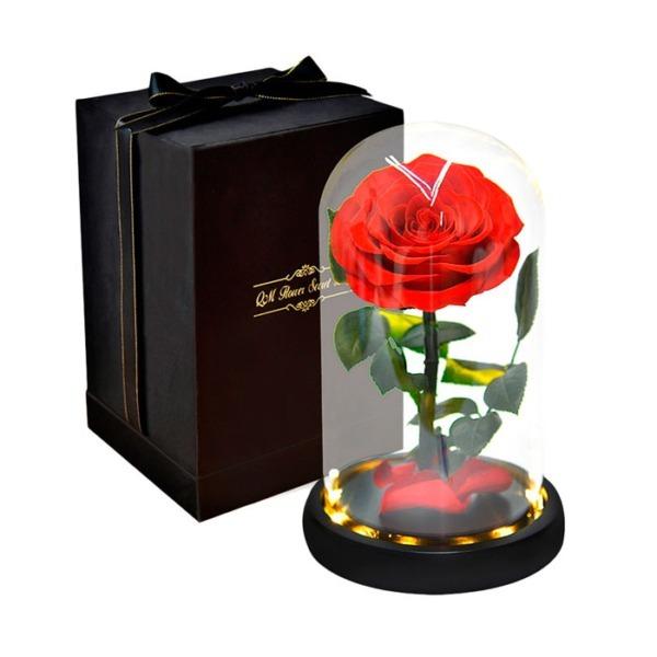 vecna-roza-v-stiklenica-s-podaricna-kutiq-01