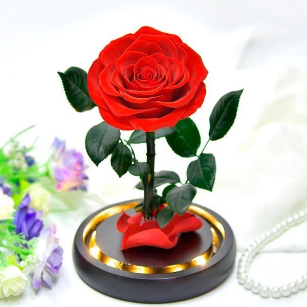 vecna-roza-v-stiklenica-s-podaricna-kutiq-03