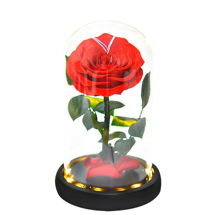 vecna-roza-v-stiklenica-s-podaricna-kutiq-06