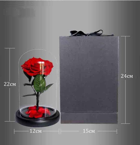 vecna-roza-v-stiklenica-s-podaricna-kutiq-11
