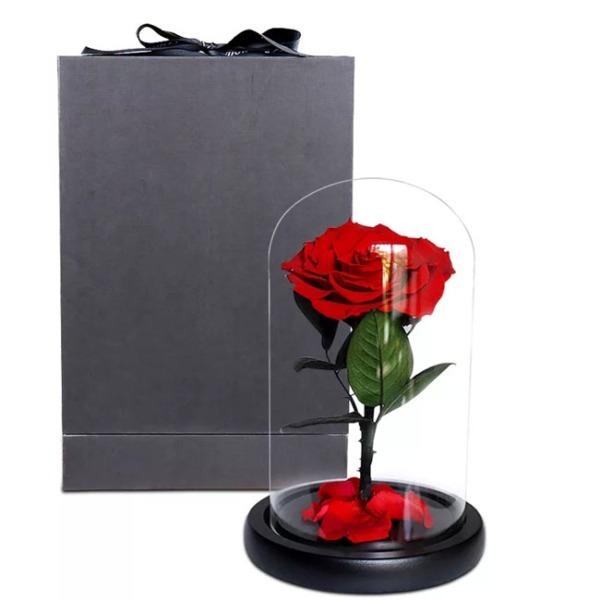 vecna-roza-v-stiklenica-s-podaricna-kutiq-3