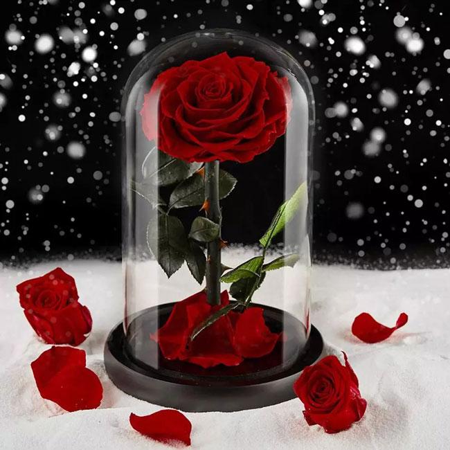 Вечна роза в стъкленица с подаръчна кутия