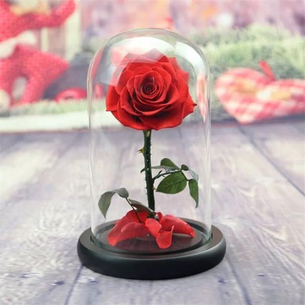 vecna-roza-v-stiklenica-s-podaricna-kutiq-5