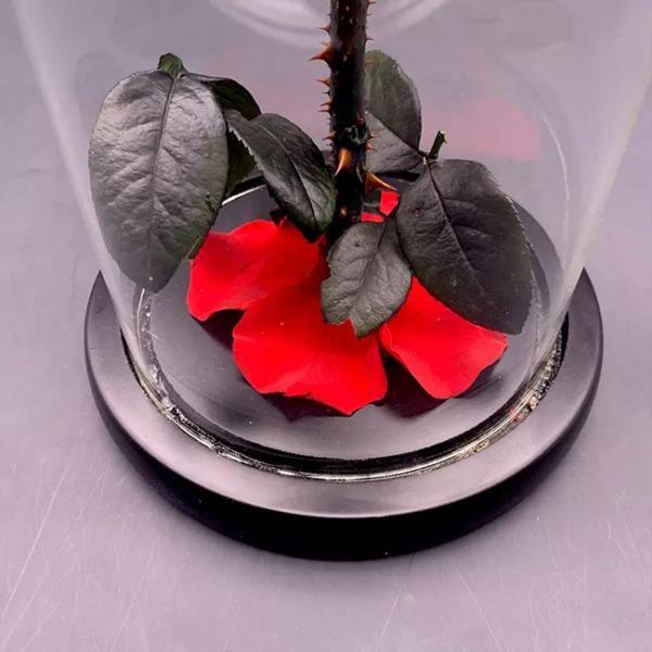 vecna-roza-v-stiklenica-s-podaricna-kutiq-6