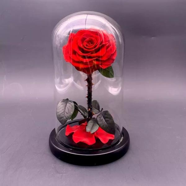 vecna-roza-v-stiklenica-s-podaricna-kutiq-7