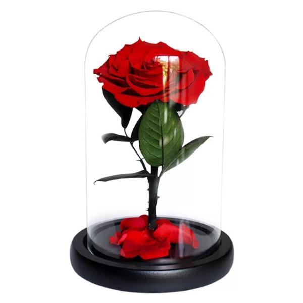 vecna-roza-v-stiklenica-s-podaricna-kutiq-8