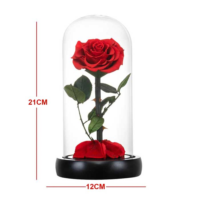 vecna-roza-v-stiklenica-s-podaricna-kutiq-cervena-s-led-svetlina-1