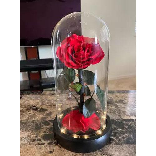 vecna-roza-v-stiklenica-s-podaricna-kutiq-cervena-s-led-svetlina-2