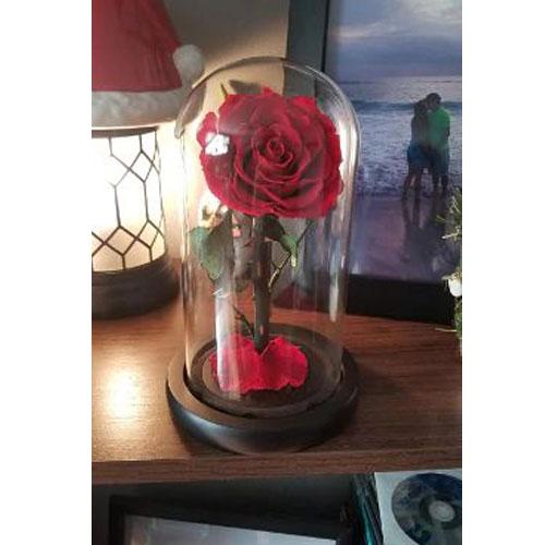 vecna-roza-v-stiklenica-s-podaricna-kutiq-cervena-s-led-svetlina-6