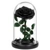 Черна роза в стъкленица