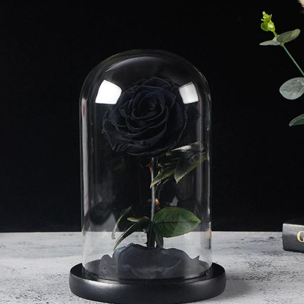 cherna-roza-v-stiklenica-2