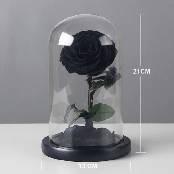 cherna-roza-v-stiklenica-6