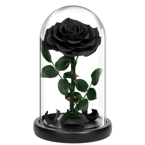cherna-roza-v-stiklenica