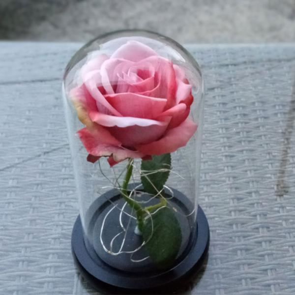 roza-v-stiklenica-bledo-rozovo-5