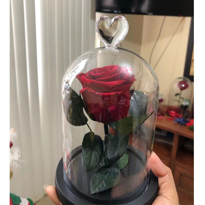 istinska-roza-v-stiklenica-11