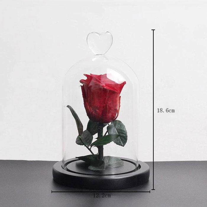 istinska-roza-v-stiklenica-4