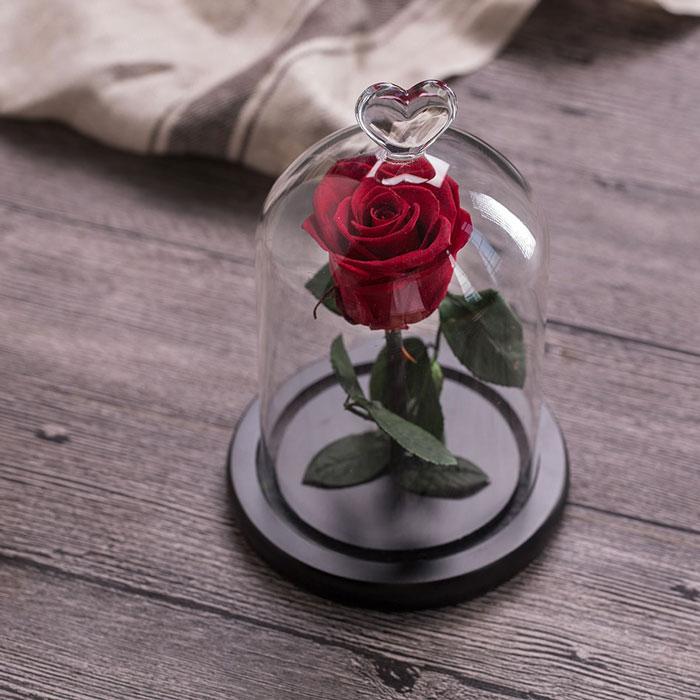 istinska-roza-v-stiklenica