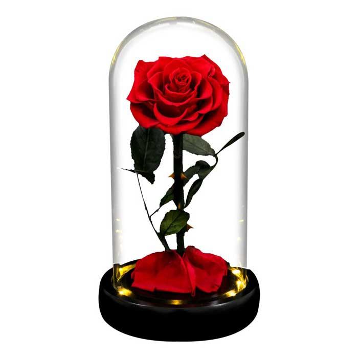 vecna-roza-v-stiklenica-s-podaricna-kutiq-cervena-s-led-svetlina