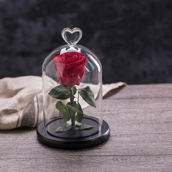 istinska-roza-v-stiklenica-chervena