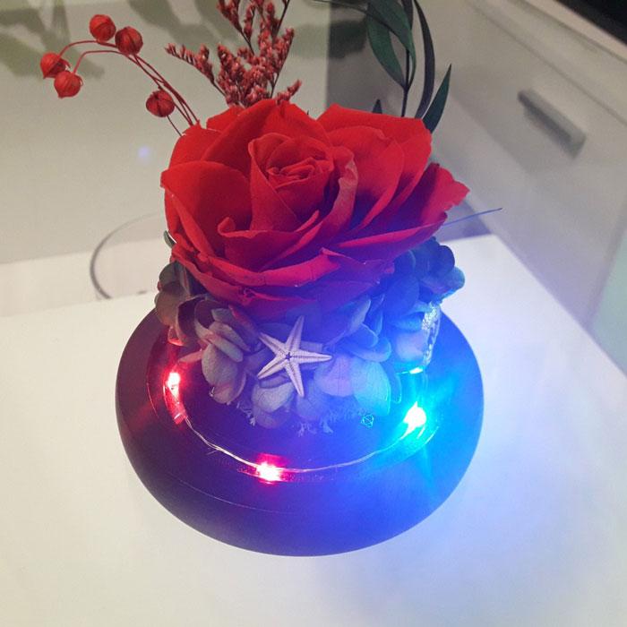 vecna-roza-v-staklenica-estestvena-s-led-svetlina-10