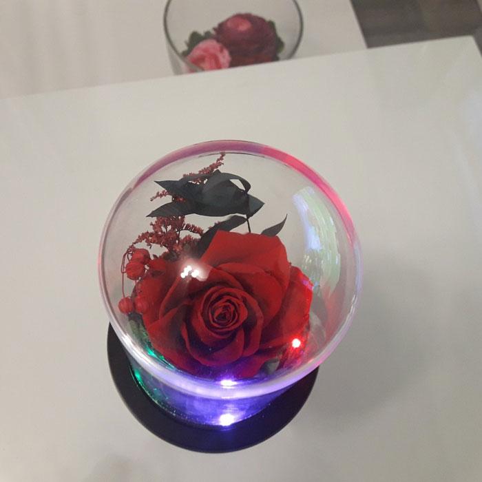 vecna-roza-v-staklenica-estestvena-s-led-svetlina-12
