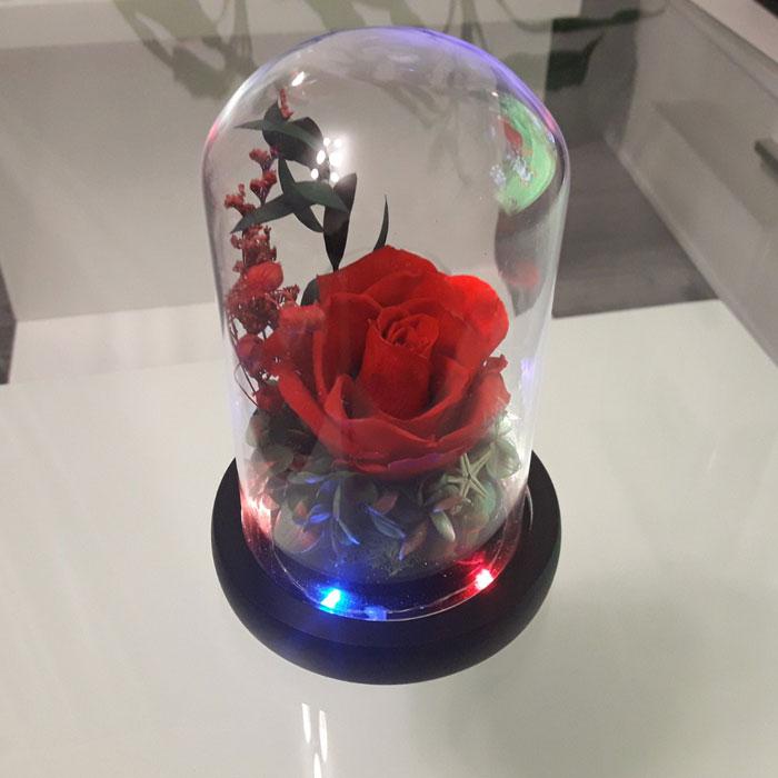 vecna-roza-v-staklenica-estestvena-s-led-svetlina-9