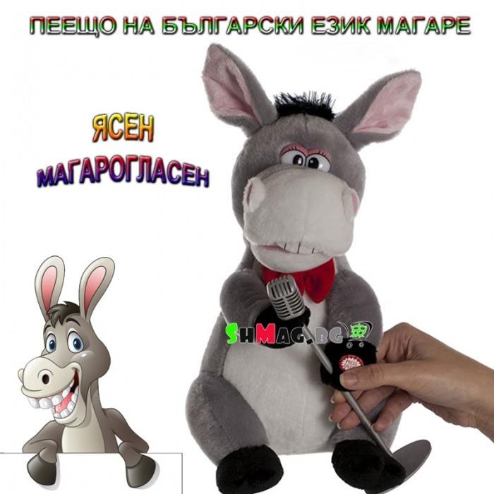 peesto-magare-yasen-magaroglasen-4