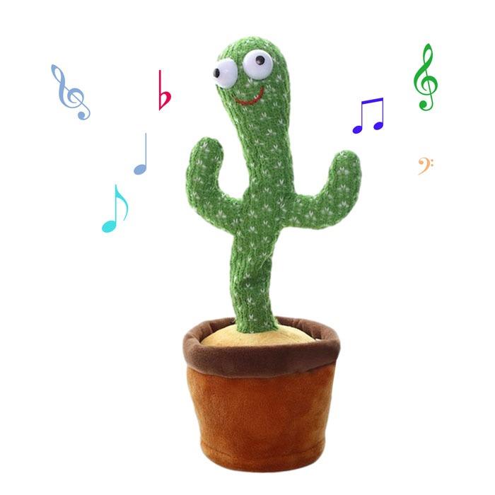 tancuvast-peest-kaktus-4